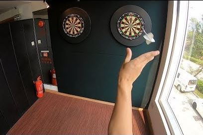 Watch This 9-darter Captured With A Go Pro Camera