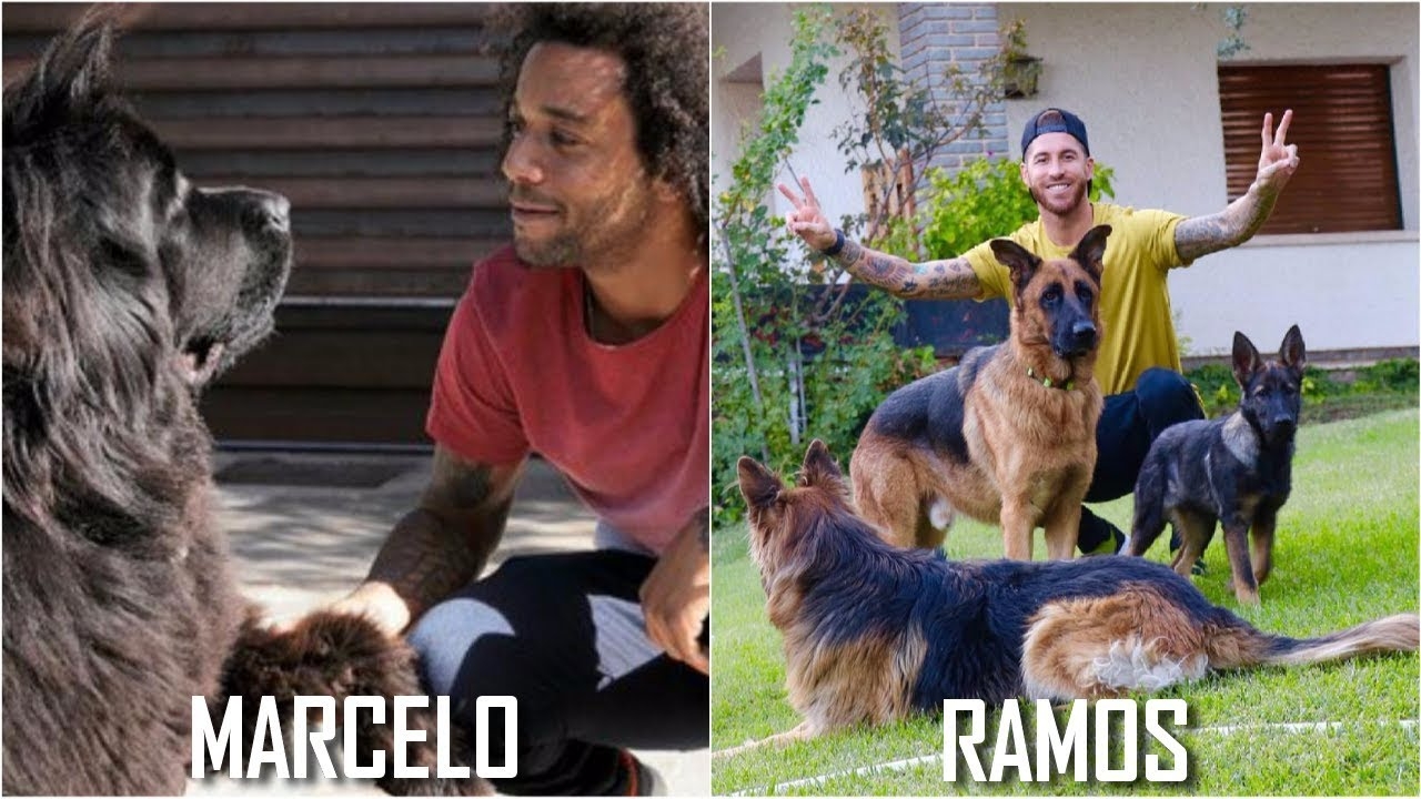 25 Famous Footballers And Their Dogs 🐶 Vote for The Best 👍 👎