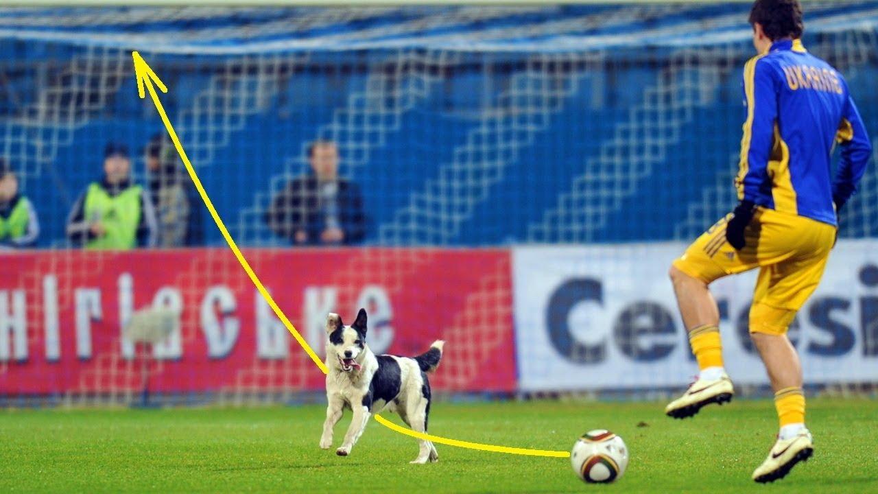 NEW 2018 Funny Football Soccer Vines ⚽️ Fails | Goals | Skills [#163]